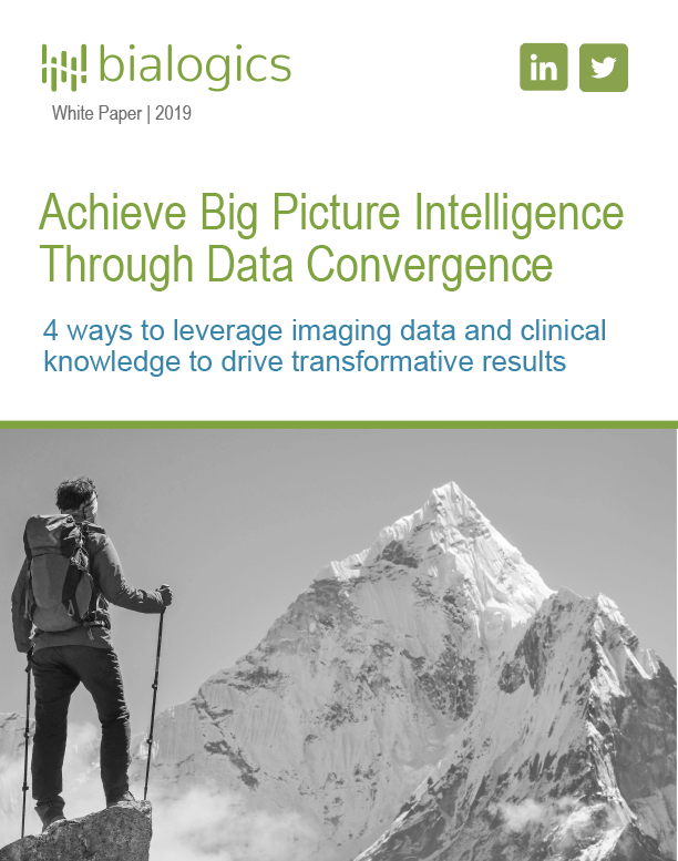 Big Picture Intelligence Through Data Convergence
